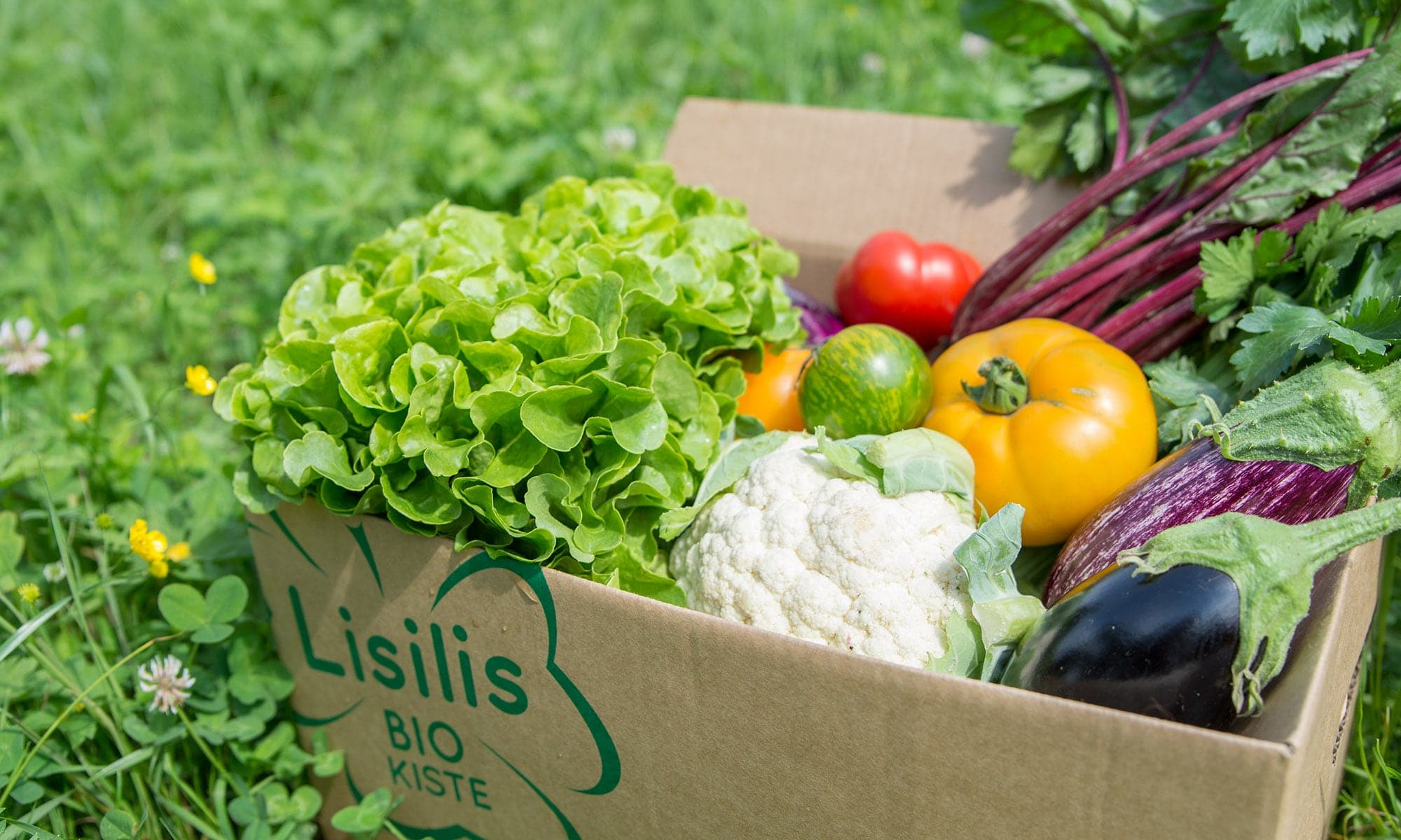Lisilis Bio-Kiste bewerten
