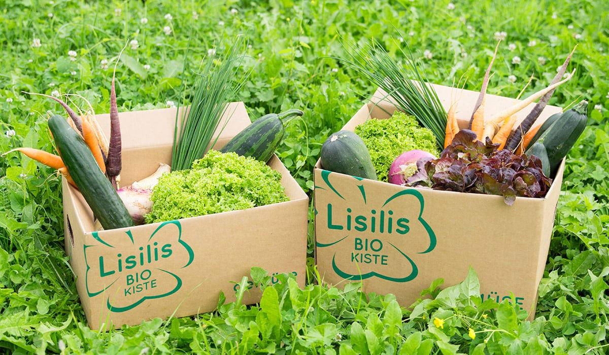 Lisilis Bio-Kiste